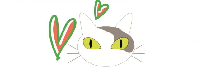 Todo sobre Meow