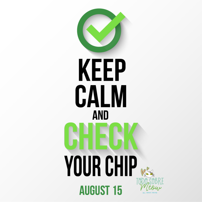 check the chip day-01